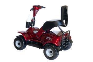 IM4 Golf Buggy